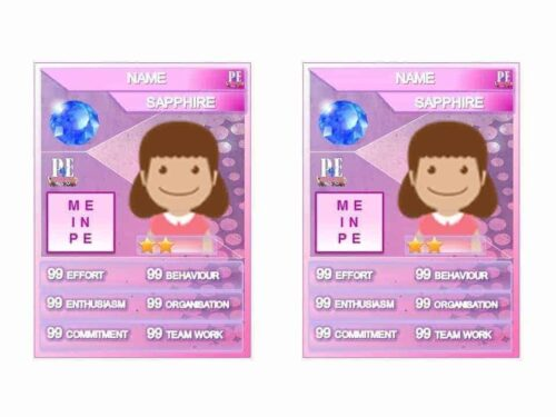 Merit PE Reward Cards Jumbo Pack 2 in 1