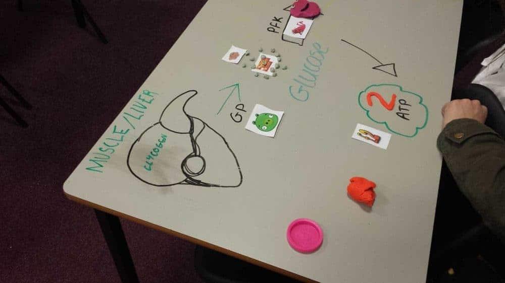 Flipped Teaching and Learning - Teach the Teacher