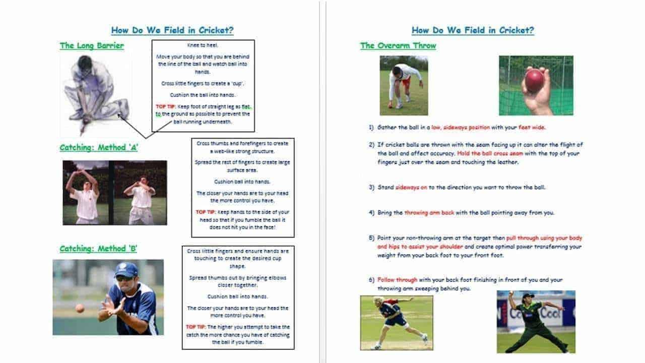 Cricket Fielding Resource