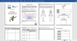 @JMcTiffen - Level 3 Sport BTEC Anatomy Summer Work